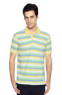 Multi Colored Striped T Shirt 49161 - Allen Solly